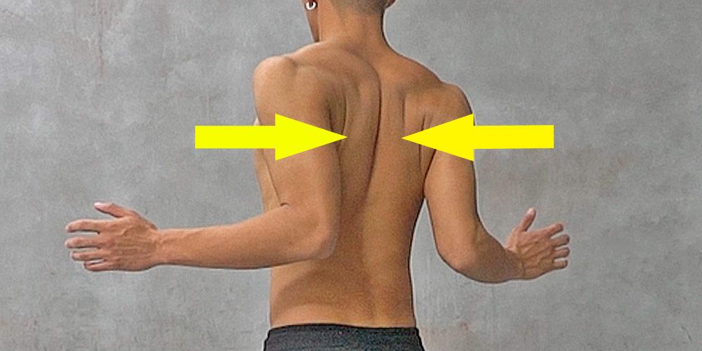 肩を落とし肩甲骨を寄せる